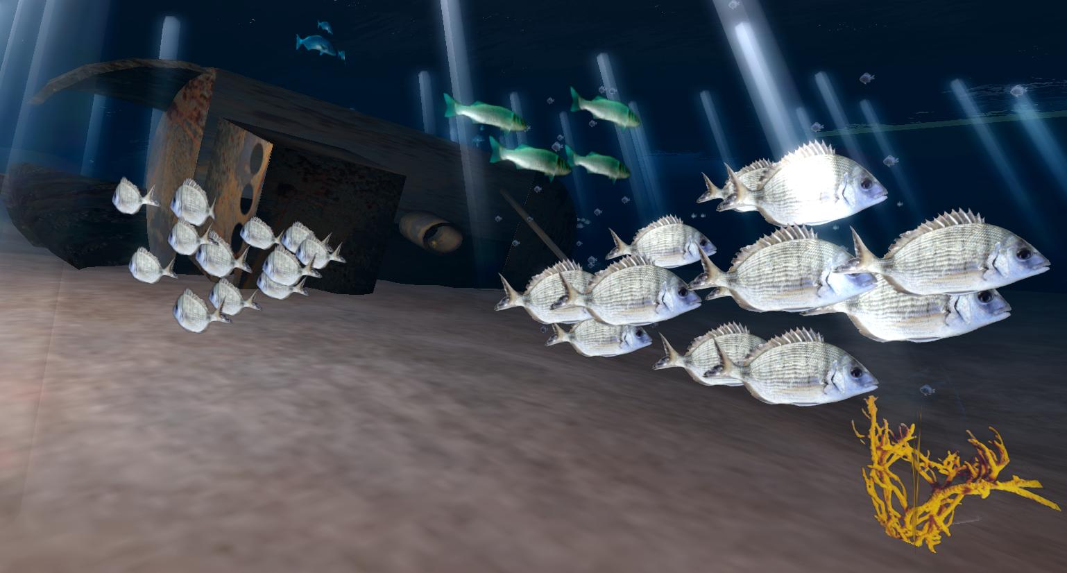 poissons_planier